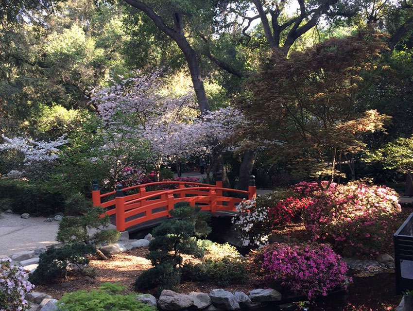 Descanso Gardens - Best Places to Visit in Los Angeles in 2021